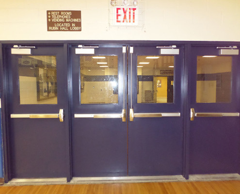 Capitol Fireproof Doors Hollow Metal Purple Doors-Bronx-NY